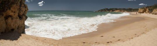 Тропический пляж стоковая фотография