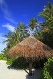 Тропический пляж Стоковое фото RF