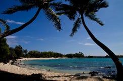 Тропический пляж (Hawaii/USA) Стоковое фото RF