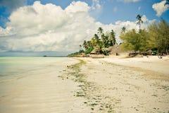 Тропический рай пляжа Стоковые Фото