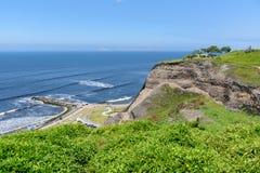Тропический сад стиля побережьем океана в солнечном дне с выигрышем Стоковые Изображения RF