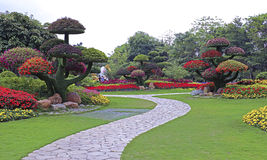 Тропический сад фигурной стрижки кустов стоковая фотография rf