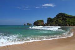 Тропический утесистый пляж стоковое изображение
