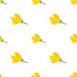 Тропический цветок - картина Cananga иланг-иланга безшовная Косметики, медицинский завод иллюстрация вектора