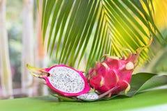 Тропический экзотический плодоовощ дракона pitahya дракона Стоковая Фотография