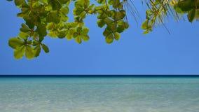 Тропический seascape в UHD акции видеоматериалы