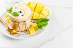 Тропический smoothie манго Стоковое Изображение