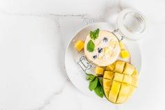 Тропический smoothie манго Стоковые Фото