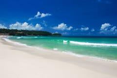 тропическое дезертированное пляжем Стоковые Изображения