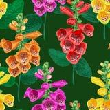 тропическое картины цветков безшовное Предпосылка лета флористическая с цветком лилии тигра Дизайн акварели зацветая иллюстрация вектора