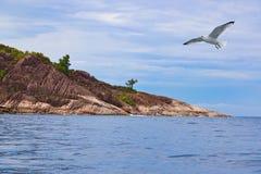 Тропическое Ла Digue - Сейшельские островы острова Стоковое Изображение