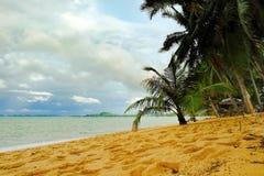 Тропическое море и голубое небо в Koh Samui, Таиланде Стоковая Фотография RF