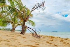 Тропическое море и голубое небо в Koh Samui, Таиланде Стоковое Изображение