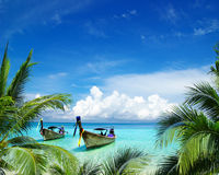 Тропическое море стоковые изображения