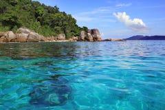 тропическое моря поверхностное Стоковые Изображения