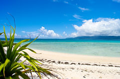 тропическое острова японское Стоковое Изображение RF