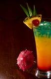 Тропическое питье стоковые фото