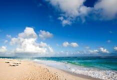 тропическое пляжа красивейшее Стоковое Изображение