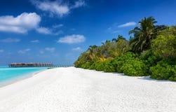 тропическое пляжа мечт Стоковое Фото