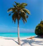 тропическое пляжа совершенное Стоковые Изображения RF