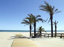 тропическое пляжа солнечное Стоковые Изображения RF
