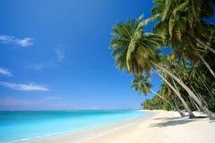 тропическое рая острова пляжа совершенное стоковая фотография rf