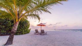 Тропическое схематическое знамя пляжа место природы тропическое Пальмы и голубое небо Концепция летнего отпуска и каникул Стоковая Фотография