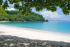 тропическо стоковое изображение