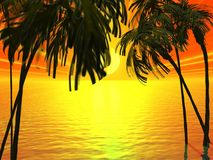 тропическо Стоковые Изображения
