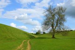 тропка Англии сельской местности cotswolds Стоковое Изображение RF