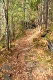 Тропка в горах Стоковая Фотография RF