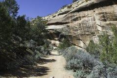 тропка каньона Стоковые Фото
