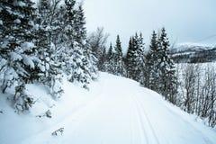 тропка катания на лыжах 2 стран перекрестная Стоковое Изображение