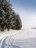 тропка лыжи страны перекрестная Стоковое Фото