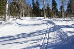 Тропка лыжи Стоковое Изображение