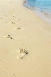 Тропка на пляже Стоковые Изображения