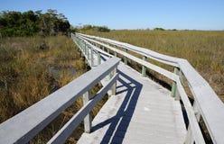 тропка парка замечания болотистых низменностей национальная стоковая фотография rf