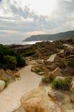 тропка природы albany Стоковое Фото