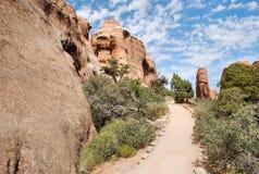 тропка пустыни Стоковая Фотография RF
