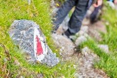тропка США весен горы manitou падения colorado Стоковые Фотографии RF