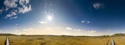 тропка трясины hiking деревянная Стоковая Фотография RF