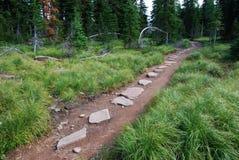 тропка carthew alderson hiking Стоковое Изображение RF