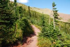 тропка carthew alderson hiking Стоковое Изображение