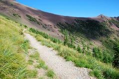 тропка carthew alderson hiking Стоковые Фотографии RF
