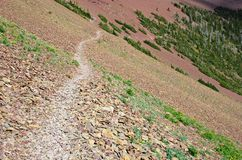 тропка carthew alderson hiking Стоковые Фото