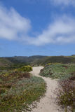 Тропка Sandy Стоковые Изображения RF