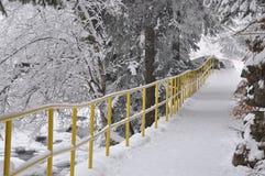 Тропка Snowy в парке Стоковые Изображения RF