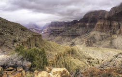 тропка tanner каньона грандиозная Стоковые Фотографии RF