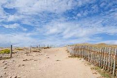 Тропки в дюнах на Quiberon плавают вдоль побережья, Бретан Стоковые Изображения