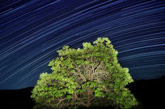 тропки звезды Стоковое Изображение RF